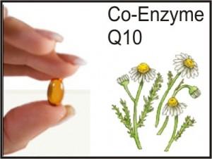 A Co-Enzima Q 10 faz maravilhas pelo seu coração e pra todo o seu sistema cardiovascular! Vale a pena conferir!