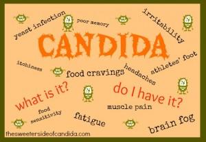 A candida albicans é um fungo, que se alimenta de açúcar e, traz muitos prejuízos para a saúde. Você tem candida? Fique ligado!