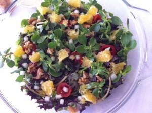 salada de beldroega com laranja e nozes...hummmm...delícia, vovó!!!