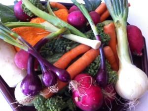 Esta canja pode levar cenoura, cebola, alho-poró, brócolis, abóbora madura, nabo e outros vegetais que você goste!