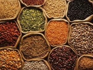 Comer grãos integrais e orgânicos todos os dias dilui os carcinógenos do intestino grosso!