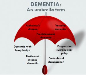 Existem aproximadamente 100 tipos diferentes de demência, entre eles o Mal de Alzheimer´s e a Doença de Parkinson.