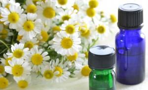Há dois tipos de óleo essencial de camomila: o de camomila romana e o de camomila azul